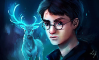 Harry Potter from Camille Fourcade