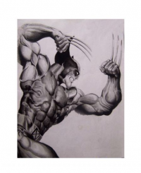 Wolverine from Luis Carlos