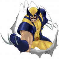 Wolverine from Lucas Ackerman