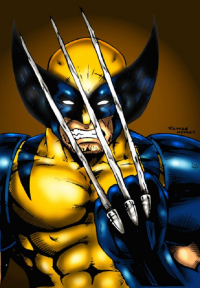 Wolverine from Henrique