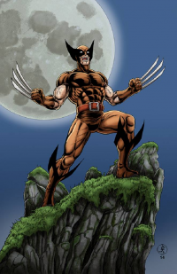 Wolverine from Leigh Kellogg