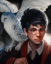 Harry Potter from Malin Falch
