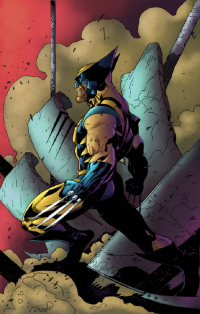 Wolverine from André Campos