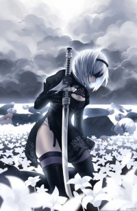 2B from Mistershiroi