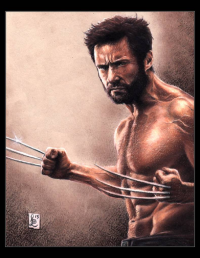 Wolverine from louissollune