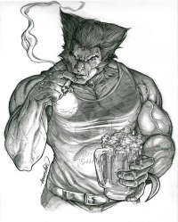 Wolverine from Emmshin