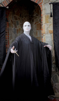 Mr. Freeze as Lord Voldemort