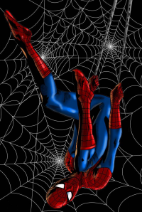 Spider-Man from Marc Ouellette