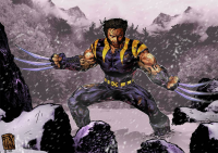 Wolverine from fikkoro