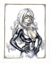 Black Cat from David Yardin