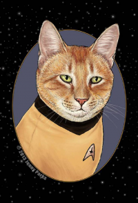 James T. Kirk from Jenny Parks