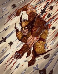 Wolverine from James Bousema