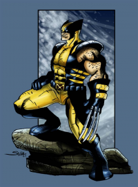 Wolverine from tchillboy