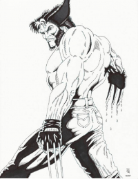 Wolverine from Rick Tyndall