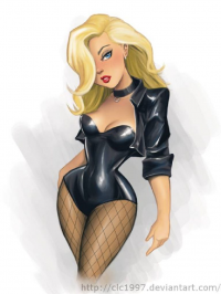 Black Canary from clc1997