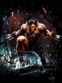 Wolverine from Rudy Ao