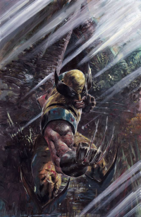 Wolverine from Ardian Syaf