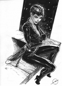 Catwoman from Stjepan Sejic
