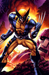 Wolverine from Jeremy Roberts