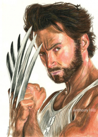 Wolverine from Anthony Hill