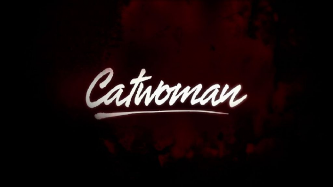 DC's Catwoman