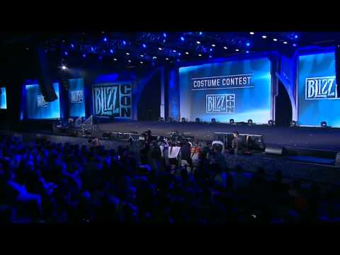 BlizzCon 2014 Costume Contest